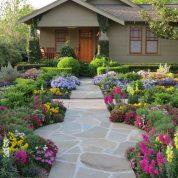 هایپر تره بار | انواع گیاهان در طراحی فضای سبز