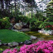 هایپر تره بار | حفظ و نگهداری فضای سبز