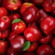 هایپر تره بار | نهال سیب رد دلیشز