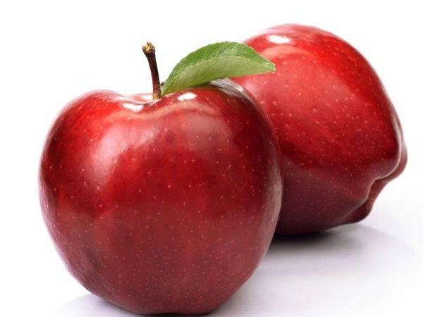 هایپر تره بار | نهال سیب استارکینگ یا قرمز فرانسه